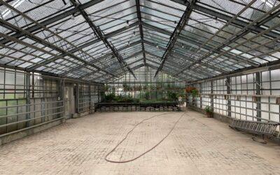 Im Herzen der Botanik – Sanierung Merian Gärten